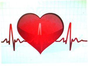 """機械的に正確ではなく、""""ゆらぎ""""ながらリズムを刻む心臓"""