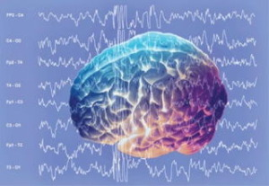 【一定のゆらぎの幅をもちながら規則的な脳波】