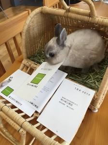 小嶋工務店着工式8月2