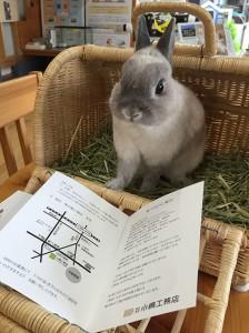 小嶋工務店着工式8月4
