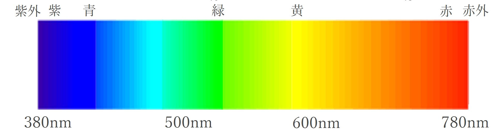 色というもの | TOKYO WOOD宿泊体感モデルハウス小金井ブログ